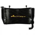 Ducati 749 749R 749S 999 999R 999S 03-06  chladic vodni kapalinovy